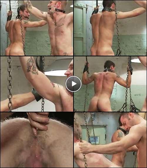 free huge dicks porn video